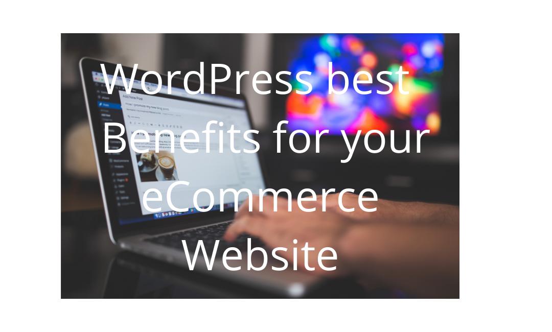 WordPress best  Benefits for your eCommerce Website